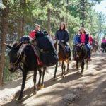 """Hikers"" on horseback heading to Yubeng Village"