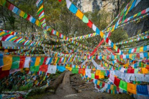 Prayer flags cover the trail on the way to Yubeng Sacred Waterfall