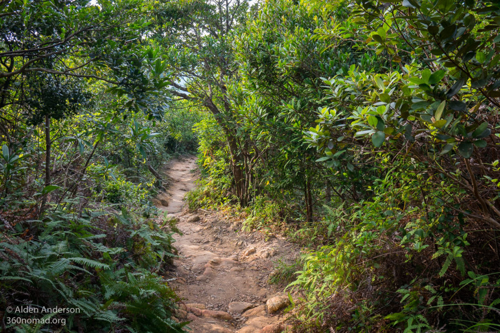 Dragon's Back Trail, coming down from Shek O Peak