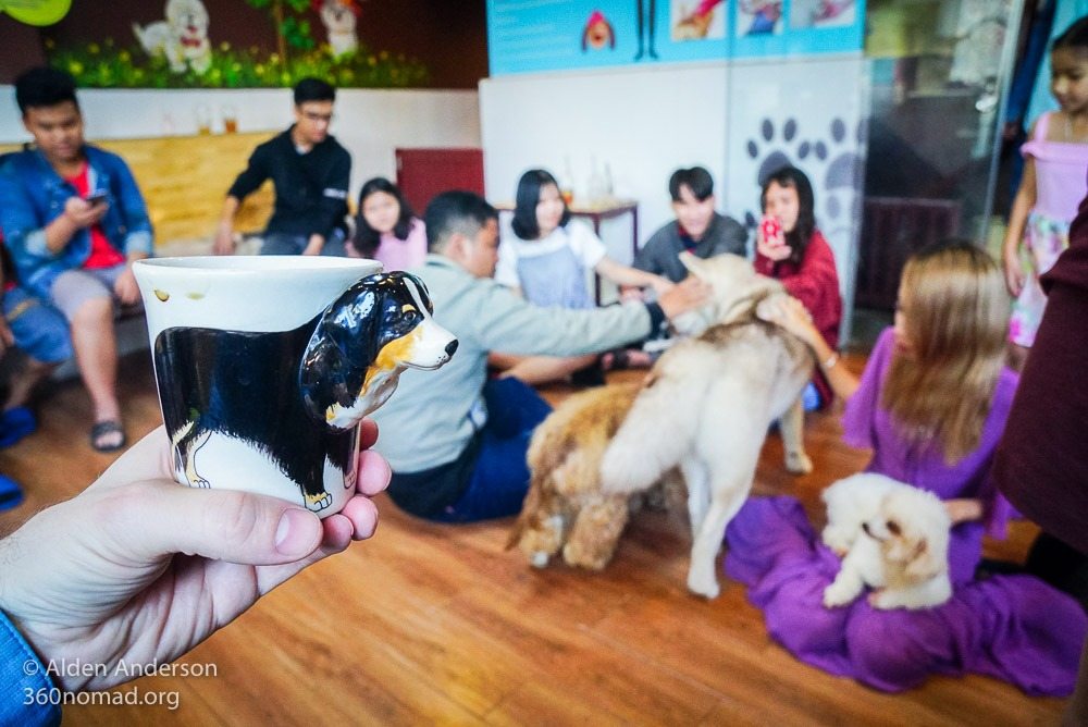 Hachiko Dog Cafe Ho Chi Minh City - Saigon