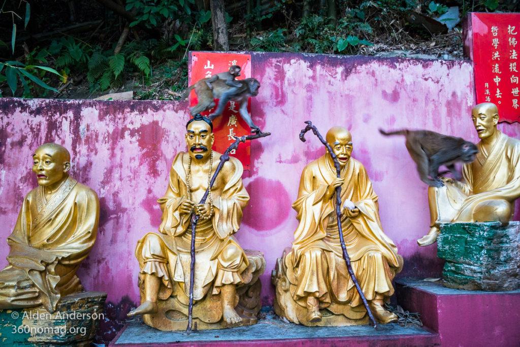 Monkeys run across the golden statues