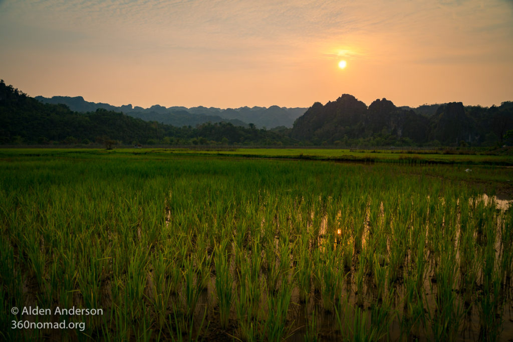 Rice fields and karst at sunset