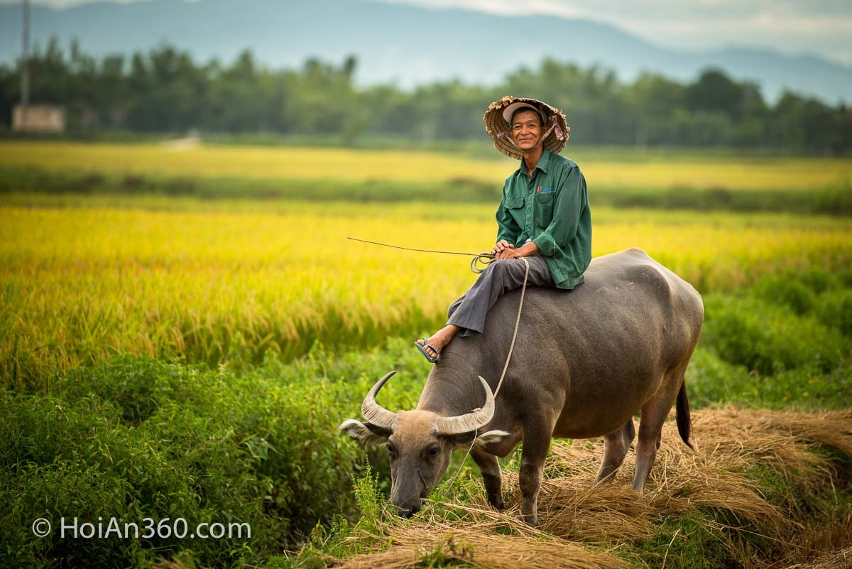 Countryside & Culture Photo Tour